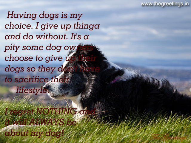 Sayings picture pet dogs