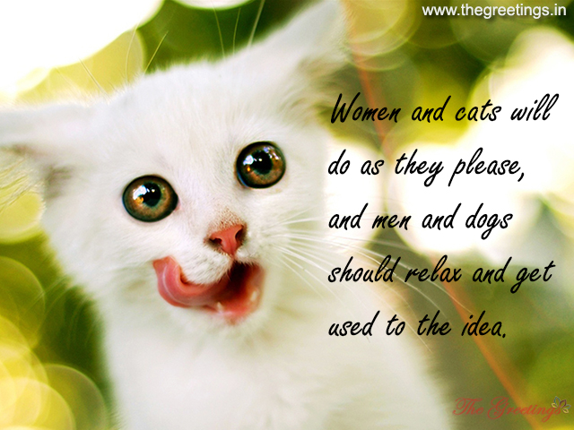 cats pet quotes