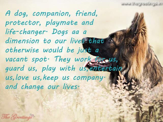 pets quotes for dog